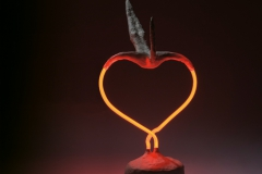 transformatie van het hart